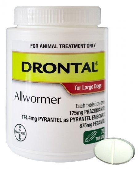 drontal allwormer for dogs 35kg tablet   bayer