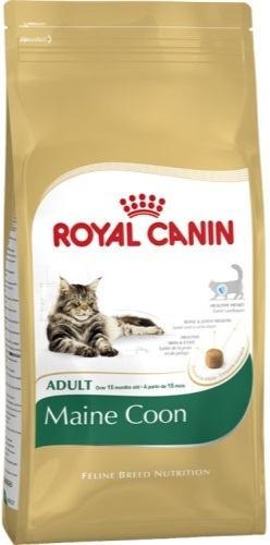 royal canin feline maine coon. Black Bedroom Furniture Sets. Home Design Ideas