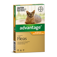 Advantage for Cats & Kittens Up to 4kg