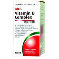 Value Plus Vitamin B Complex Injection 100ml