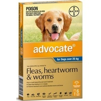 Advocate for Dogs over 25kg X/Large Dark Blue