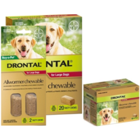 Drontal Allwormer Chewable for large Dogs  35kg